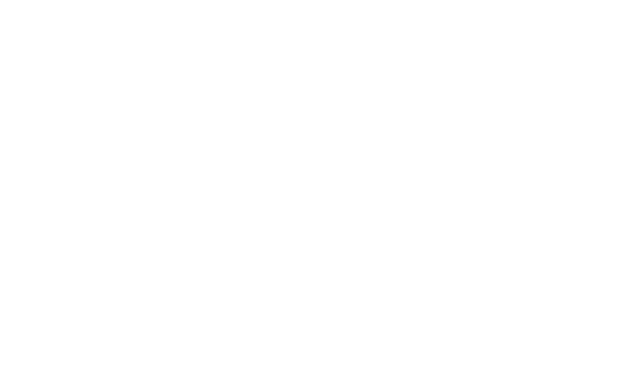 Stephen George + Partners LLP